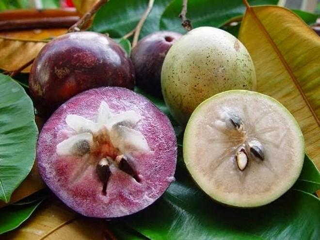 những loại hoa quả Việt Nam không bao giờ phải nhập từ Trung Quốc