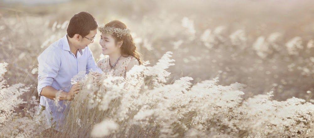 Bãi đá sông Hồng với cánh đồng cỏ lau thơ mộng