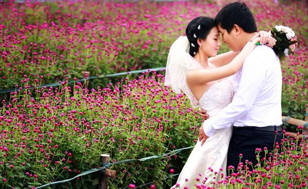 Lựa chọn Vườn Hoa Bách Nhật để chụp ảnh cưới