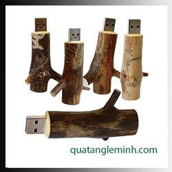 USB quà tặng - USB gỗ 010