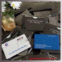 USB Namecard - Lumi - Misa - Dũng Diệu
