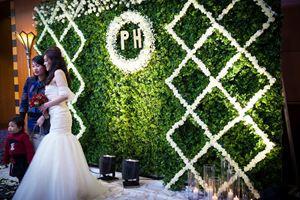 Phông cưới hoa cỏ xanh