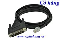 Cisco DB25 to RJ45 Modem/Console Cable