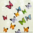 Giấy nhớ hình cánh bướm S0492 30g