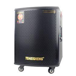 Loa Kéo Di Động Temeisheng GD1203