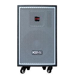 Loa điện di động Acnos KDNet3011