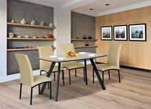 Bộ bàn ghế ăn khung thép B50 + G50
