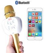 Mic karaoke bluetooth kiêm loa ZBX-66