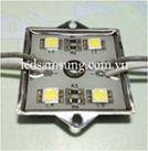 MODULE 4 BONG LQT-5050-4C