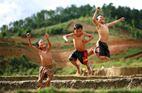 Ý tưởng gợi mở từ ký ức tuổi thơ