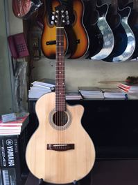 đàn guitar dây sắt HA262A