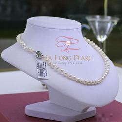 Pearl necklaces - Akoya 61A603S011