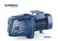 máy bơm nước Pedrollo JSWm-2CX / 750W