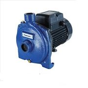 Máy bơm nước ly tâm Panasonic GP-20HCN1 2HP
