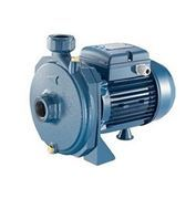 Máy bơm nước dân dụng Pentax CM100 / 750W