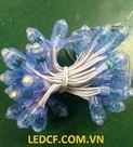 LED ĐÚC F7/12 (MẮT TRONG 12V) HHX