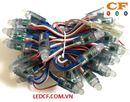 LED đúc và các thông số kỹ thuật cần biết