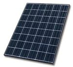 Tấm pin năng lượng mặt trời 120w Poly