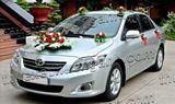 Xe cưới Toyota Vios