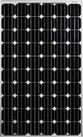 Pin năng lượng mặt trời 300w mono