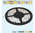 Đèn LED không keo - 12V Cuộn 5m (trắng)
