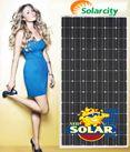 Pin năng lượng mặt trời 255w mono