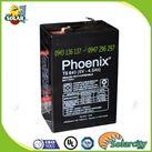 ẮC QUY PHOENIX 6V-5Ah (TS650) dùng cho xe điện trẻ em