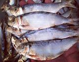 Cá trích khô (nguyên con)