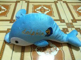 Cá heo thêu