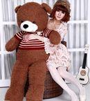 Gấu bông Teddy bán ở đâu?