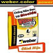 Keo chà ron WEBER cao cấp Power