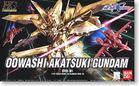 Owashi Akatsuki Gundam (HG)