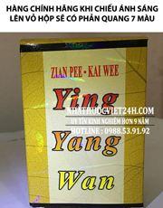 Dinh Dưỡng Hoàn (Ying Yang Wan)
