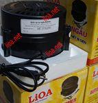 Đổi Điện 220V Sang 100V Lioa 600W