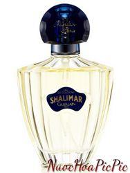 Nước Hoa Nữ Guerlain Shalimar Eau De Cologne 75ml