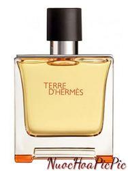 Nước Hoa Nam Hermes Terre D'Hermes Edp 75ml