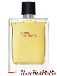 Nước Hoa Nam Hermes Terre D'Hermes Edt 100ml