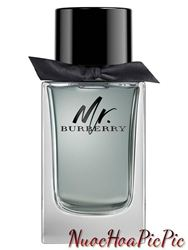 Nước Hoa Nam Burberry Mr. Burberry Edt 100ml