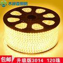 LED cuộn 220v ( 3014 )
