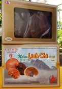 XÍCH LINH CHI -Hộp giấy 100 G