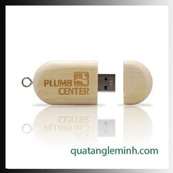 USB quà tặng - USB gỗ 019