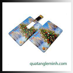 USB quà tặng - USB card 022