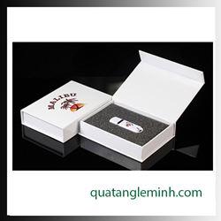 USB quà tặng - hộp usb - hộp giấy mỹ thuật 001