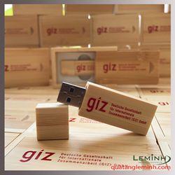 Bộ usb gỗ quà tặng in logo - GIZ