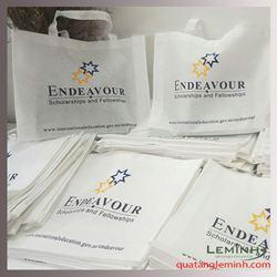 Túi vải không dệt  - Endeavour