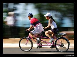 Mua xe đạp đôi ở đâu tốt nhất