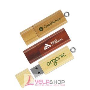 USB GỖ 06