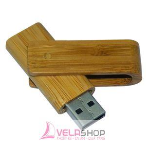 USB GỖ 12