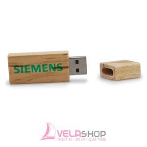 USB GỖ 31