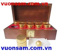 An Cung Ngưu Hoàng (hộp gỗ)